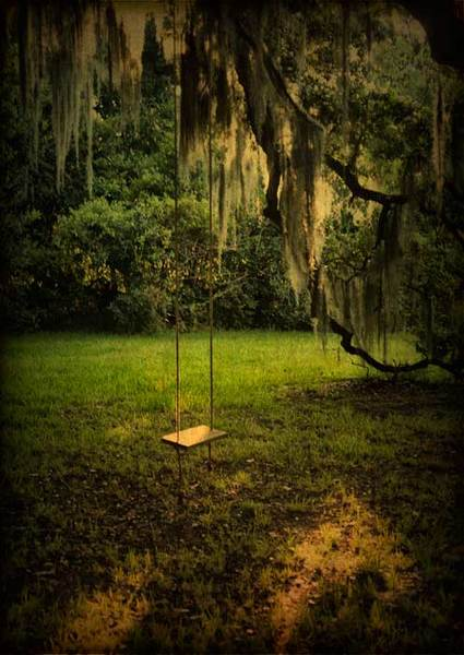 Swing and oak limb, Evergreen Plantation