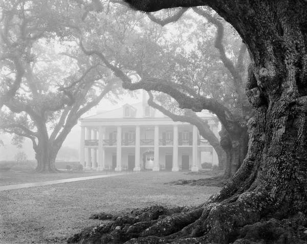 Main house, Christmas morning in fog, view from west row